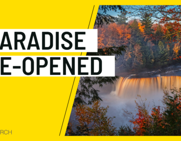 Paradise Re-Opened